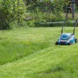 Mowing a lawn with an electrical  lawn mower — Stock Photo