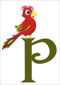 P for Parrot — Stock Vector