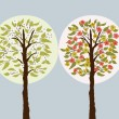 Trees in seasons — Vector de stock #24069401