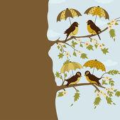 Birds under umbrella — Stock Vector