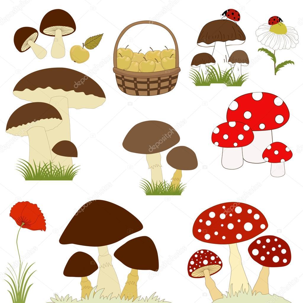 Serie di cartoni animati funghi — vettoriali stock
