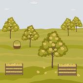 Orchard apple trees — Stockvektor