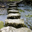 Stepping Stones — Foto de Stock