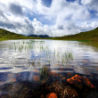 Red Tarn — Stock Photo