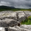 Limestone Pavement — Stock Photo #28239865