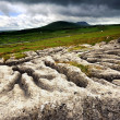 Limestone Pavement — Stock Photo #28241525