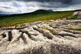 Limestone Pavement — Stock Photo