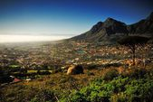 Kapstadt — Stockfoto