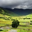 Low Cloud over Bowfell — Stock Photo