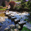 Stepping Stones — Stock Photo #33231099