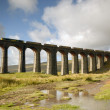 Ribblehead Railway Bridge - Settle - UK — Stock Photo #33370361