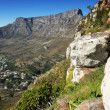 Stock Photo: Table Mountain