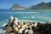 Hout Bay — Stockfoto