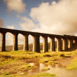 Stock Photo: Ribblehead Railway Bridge