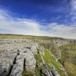 Постер, плакат: Limestone Pavement