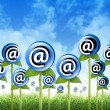 Email Internet Inbox Flowers Sprouting - 图库照片