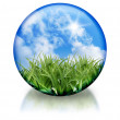Stock Photo: Organic, Nature Circle Orb Icon