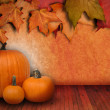 Pumpkin Background with Leaves - Stock Photo