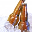 Two Alcohol Brown Glass Beer Bottles on White — Stock Photo