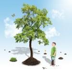 Boy Growing Nature Tree in White Garden — Stock Photo