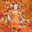 Boy Looking Up at Orange Autumn Fall Leaves — Stock Photo