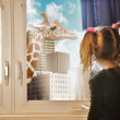 Child looking at Giraffe Dream in Window — Stock Photo