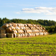 Stock Photo: Big haystack at field