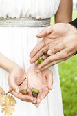 Groom gives the bride the acorns — Stockfoto