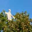 Scarecrow on the fruit trees - Stock Photo