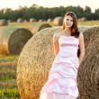 Stock Photo: Beautiful bride at sunset