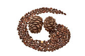 Pine cones and nuts in the form of a vortex. — Stock Photo