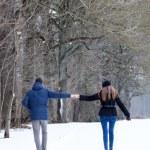 Couple walking in winter park — Stock Photo #22028791