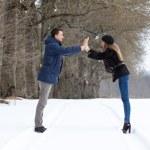 Couple walking in winter park — Stock Photo #22040589