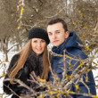Happy Young Couple in Winter garden — Stock Photo #22302381