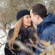 Happy Young Couple in Winter garden — Stock Photo #22302867