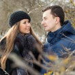 Happy Young Couple in Winter garden — Stock Photo #22303733