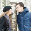 Stock Photo: Happy Young Couple in Winter