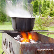 Cast iron cauldron over an open fire. — Stock Photo