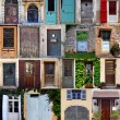 Collage with the doors from  French — Stock Photo