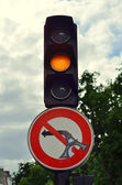 Road sign and traffic light — Stock Photo