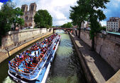 Seine river near Notre Dame — Stock Photo