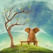 Elephant on a bench in the field — Stok fotoğraf
