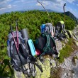Stockfoto: Tourists with backpacks in mountains