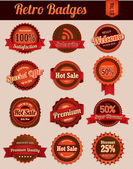 Retro Badges Vol 1 — Stock Vector