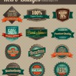 Vector de stock : Retro Vintage Badges - Combined