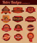 Retro Vintage Badges - Combined — Stock Vector