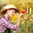 Womgardener — Stock Photo #32407087