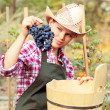 Winemaker — Stock Photo
