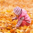 Baby with autumn leaves  — Foto Stock