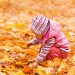 Baby with autumn leaves  — 图库照片